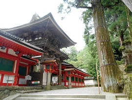img_shrine_exp_01
